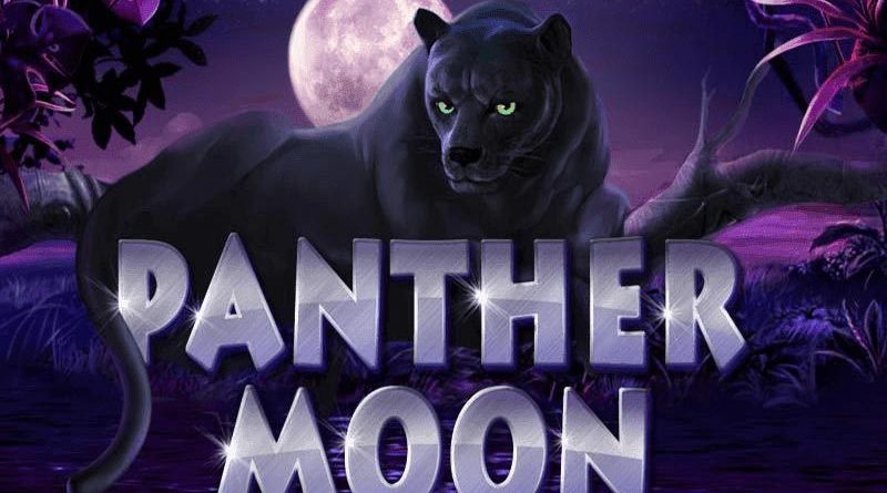 Panther-Moon-banner
